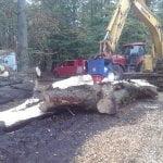 Der Deitmer Kegelspalter 250mm hat eine enorme Spaltkraft, die ganze Bäume zerlegen kann